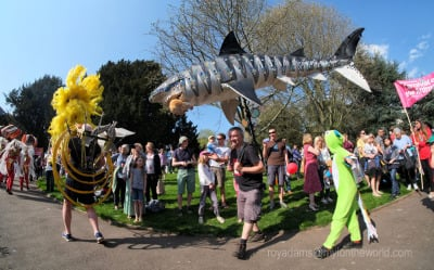 A Carnival Of Animals - Exeter's Fun In The Sun